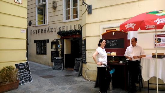 Az Esterházy-Pince